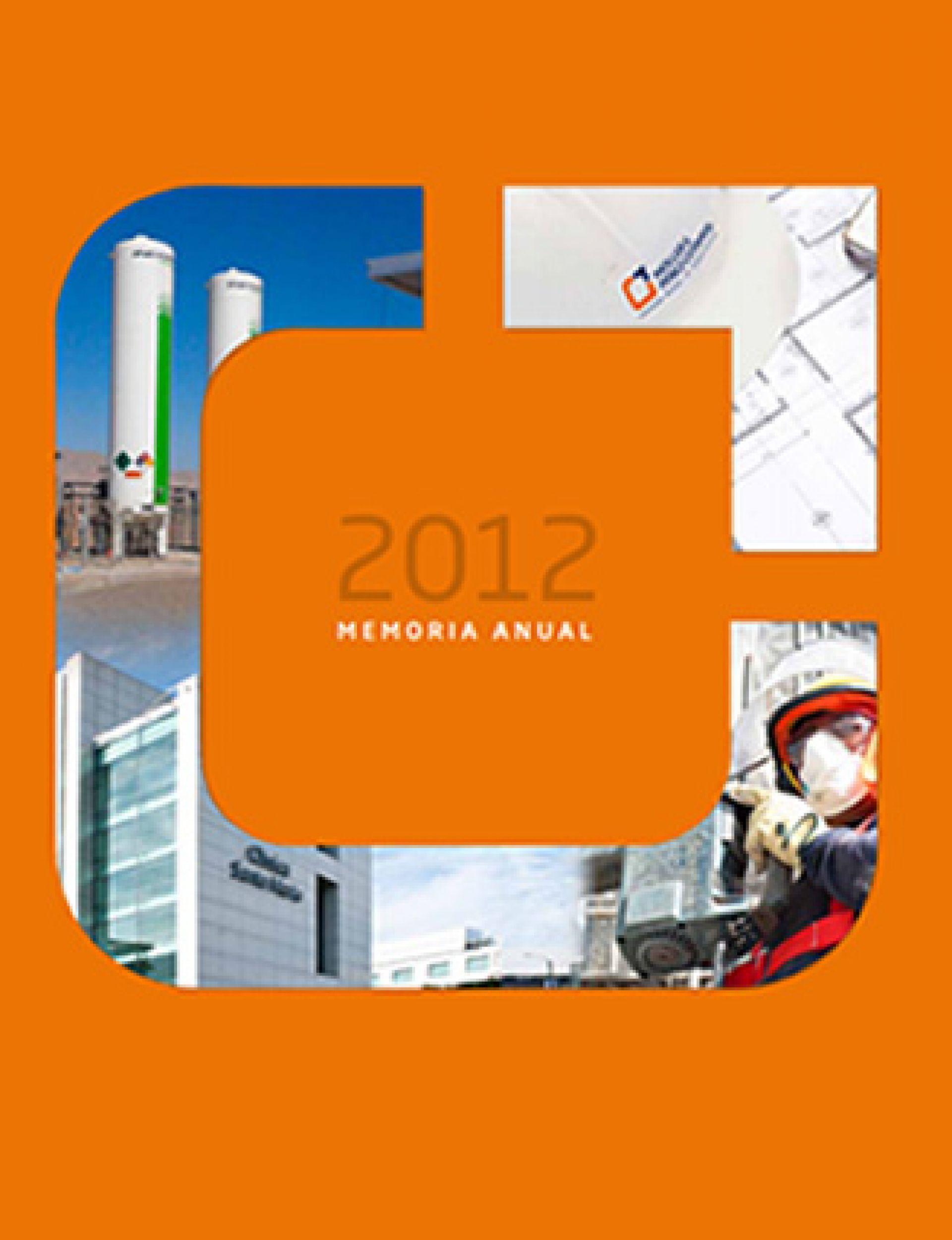 Memoria Anual Moller 2012